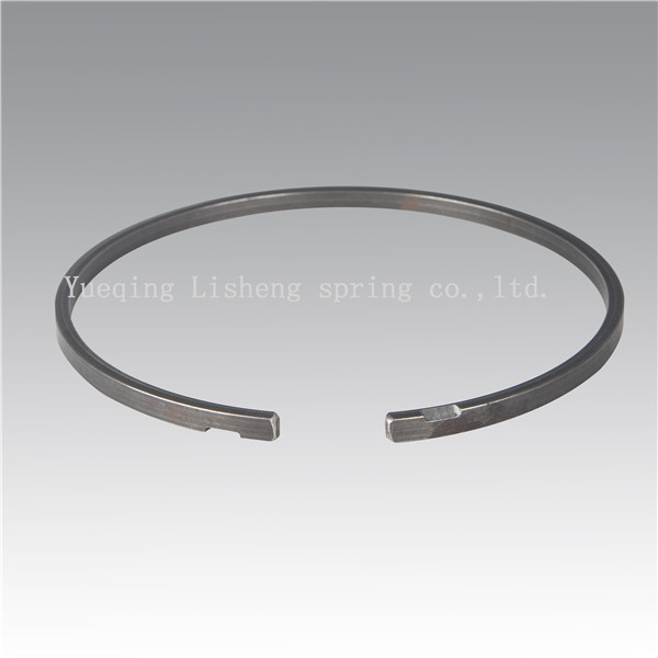 custom constant section retaining ring Featured Image