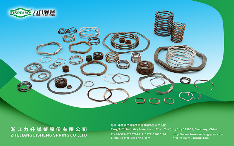 10 years' experience in designing and manufaturing wave spring !